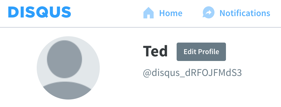 Screen shot of Disqus username